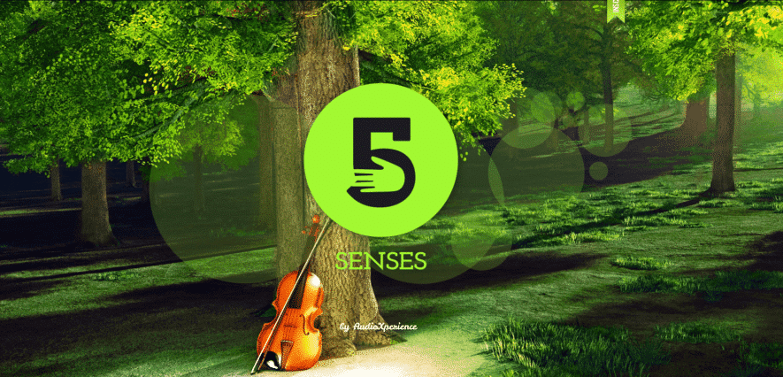 AudioXperience - 5 senses